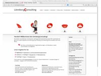 coaching-homepage-loennberg-consulting