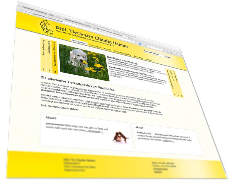 Webdesign für Tierarzt mit Content Management System