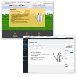 CMS-Wordpress-Mausblau.at