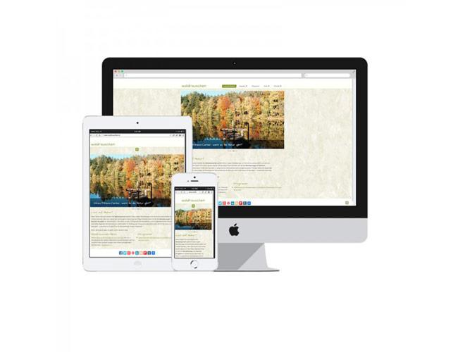 Responsive-Webdesign-Burgenland-Wordpress-Mausblau-600x600
