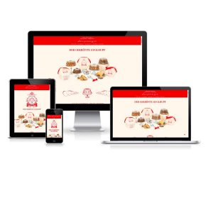 Website Design: Homepage Burgenland